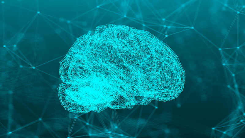 Illustration of a brain in blue green tones.
